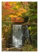 Cuttalossa Falls - Lumberville, PA