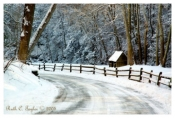 Winter Morning Along Cuttalossa Road - New Hope, PA