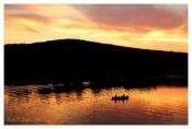Golden Sunset - Lake Nockamixon, PA