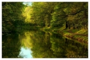 Magical Light - Delaware Canal, PA