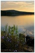 Summer Sunrise - Lake Nockamixon, PA