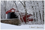 Winter Along Pine Valley Covered Bridge - Holiday Card