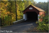Autumn at Frankenfield Covered Bridge - Note Card