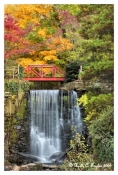 Cuttalossa Falls Lumberville - Note Card